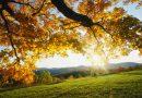 बदलणाऱ्या ऋतूत आरोग्य उत्तम ठेवण्यासाठी हे नक्की वाचा !!